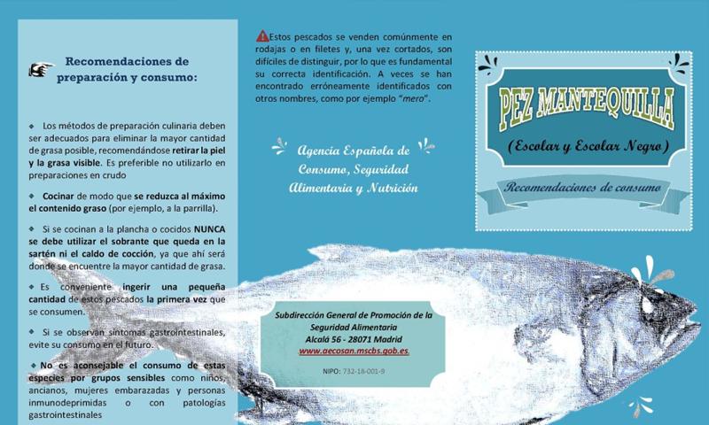 """Recomendaciones de consumo del """"pez mantequilla"""": escolar y escolar negro"""
